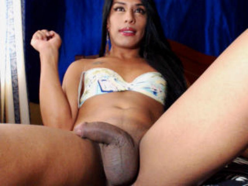 Agree with Transvestite webcams in ma interesting. You