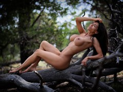 toxicsophie - female with brown hair and  big tits webcam at LiveJasmin